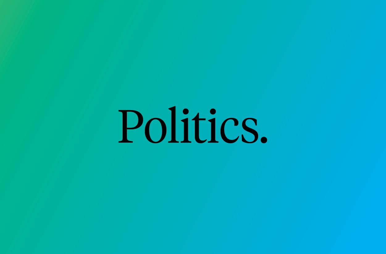 Image politics