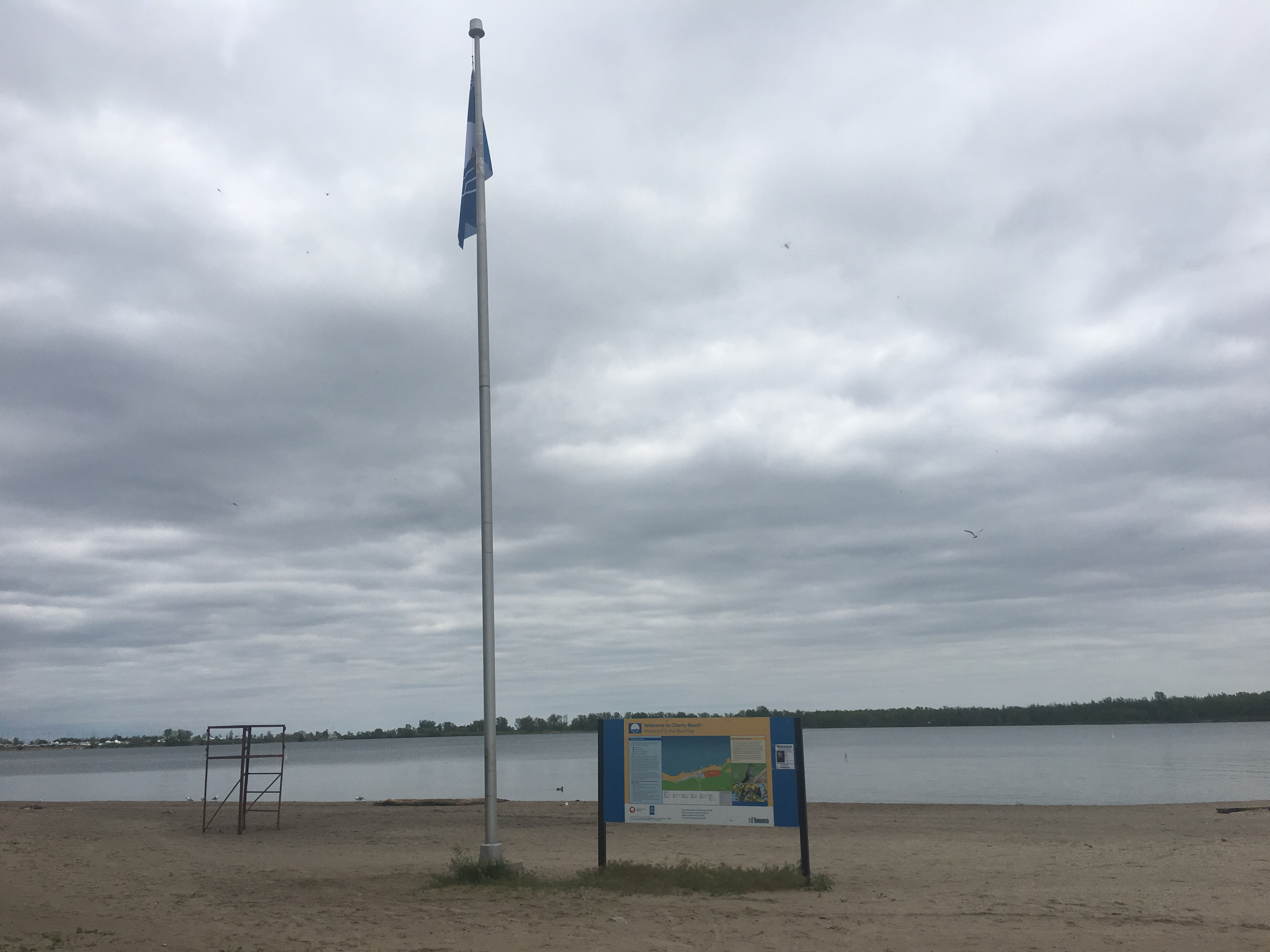 2:19 p.m. June 5, 2018. The Blue Flag at Cherry Beach on Tuesday. Swimmers should not rely on the blue flag to tell whether the water quality of a beach is at a safe level on a particular day.