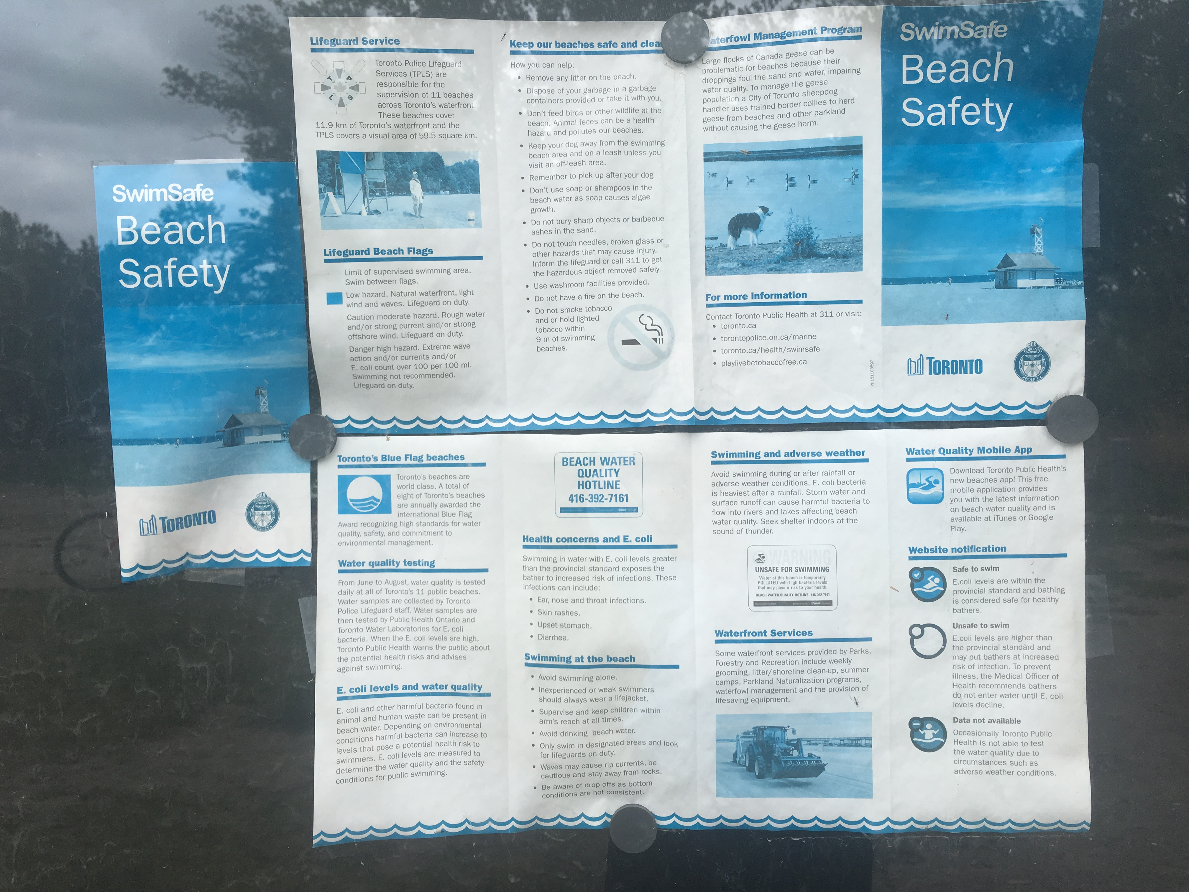 2:46 p.m. June 5, 2018. A pamphlet at Cherry Beach near the bus stop, advertising a Toronto Public Health mobile app. Signal Toronto could not find a Toronto Public Health app online.
