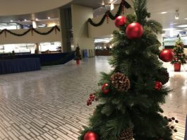4:21 p.m. Nov. 16, 2018. Christmas decorations went up in the rotunda of Toronto City Hall this week, six weeks before Christmas.